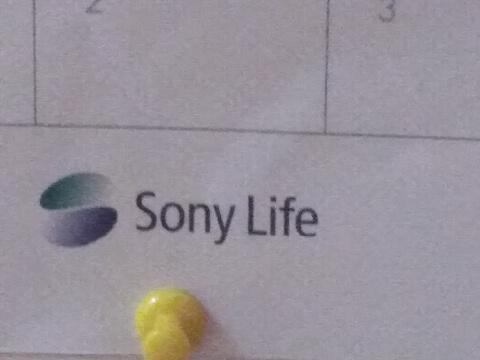 ソニー生命カレンダー2019年