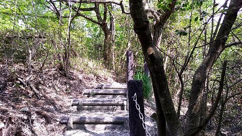 どんづるぼう 奈良県観光