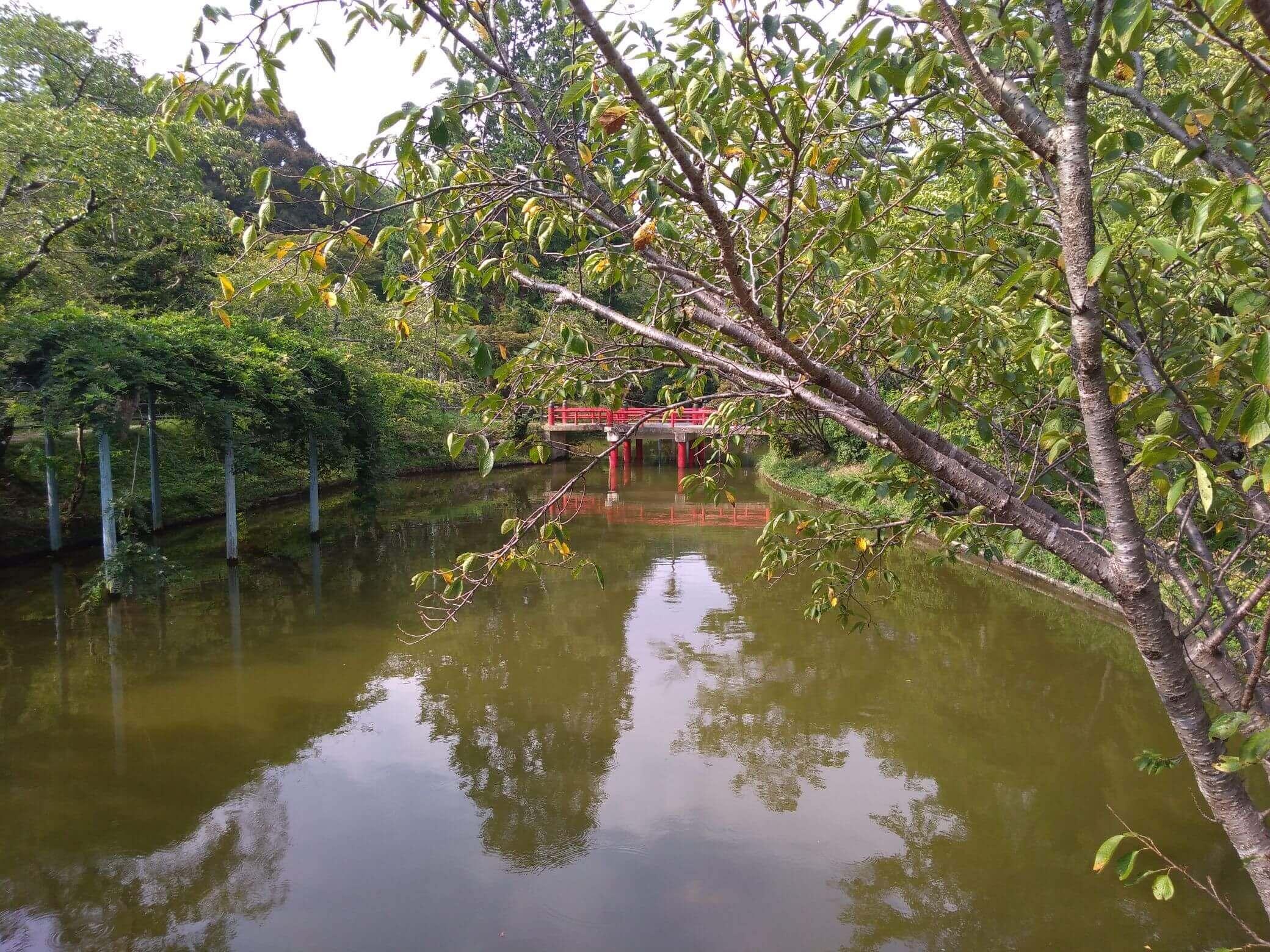 津偕楽公園201908