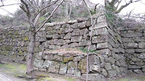 和歌山城 石垣 打込接ぎ