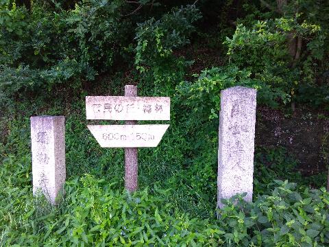 和歌山県秋葉山 観光