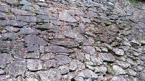 和歌山城 石垣