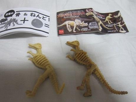怪獣と萌えと周遊 恐竜の骨、ねんど 製作キット