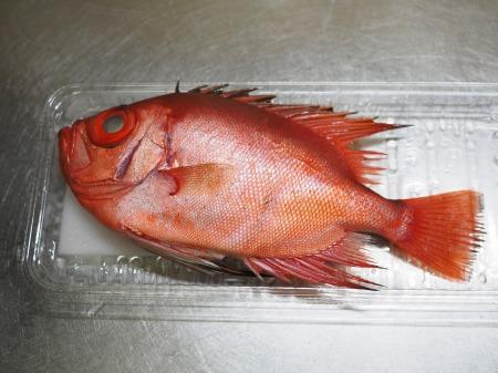 金時鯛の煮付け048