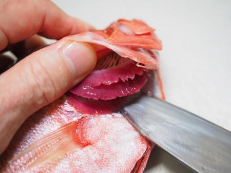 金時鯛の煮付け063