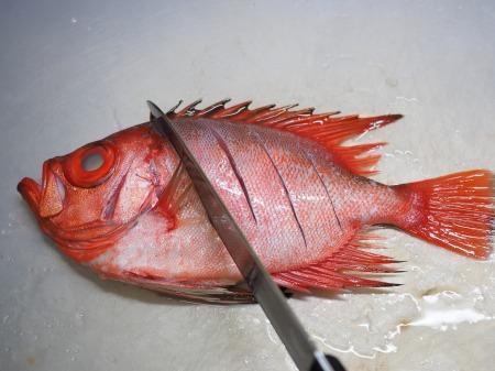 金時鯛の煮付け071