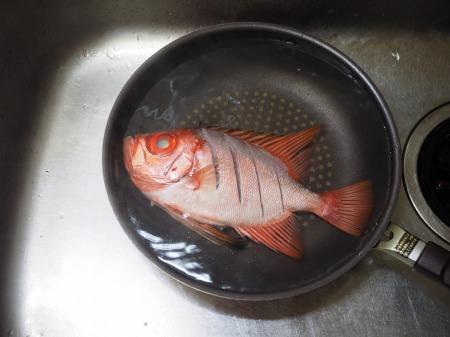金時鯛の煮付け077
