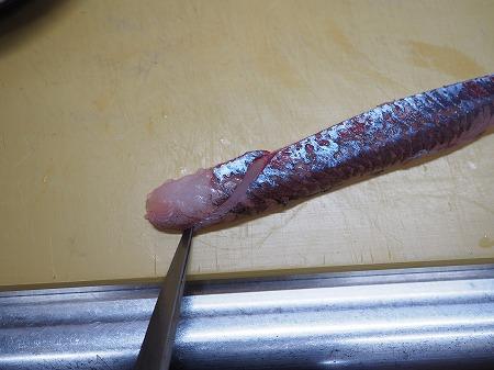 トビウオの刺身、たたき052