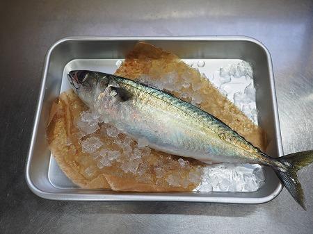 焼き鯖寿司034