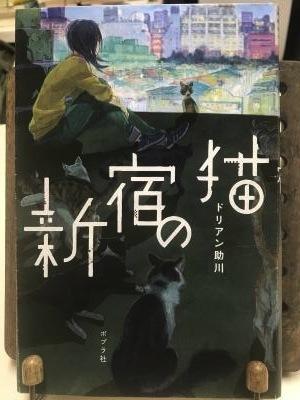 新宿の猫2