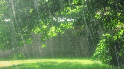 rain-1_convert_20181017152357.jpg