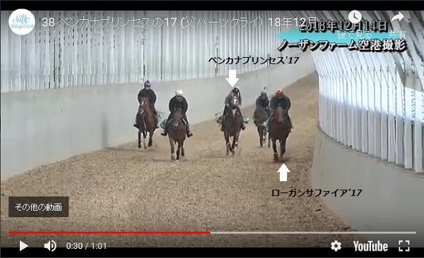 ペンカナプリンセス17 12月動画