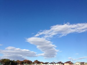 181123とても青い空