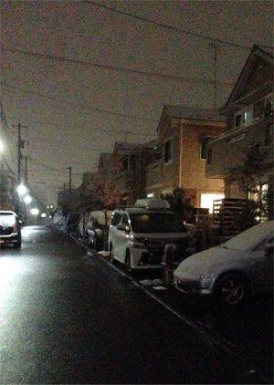 夜は雪に少し190209