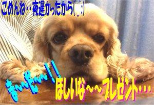 いじけルル190509