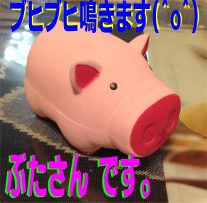 豚さんのプレゼント