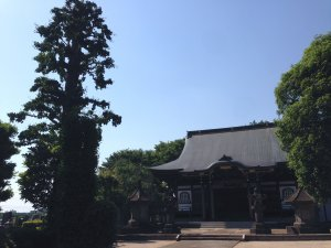 近くのお寺さん190525
