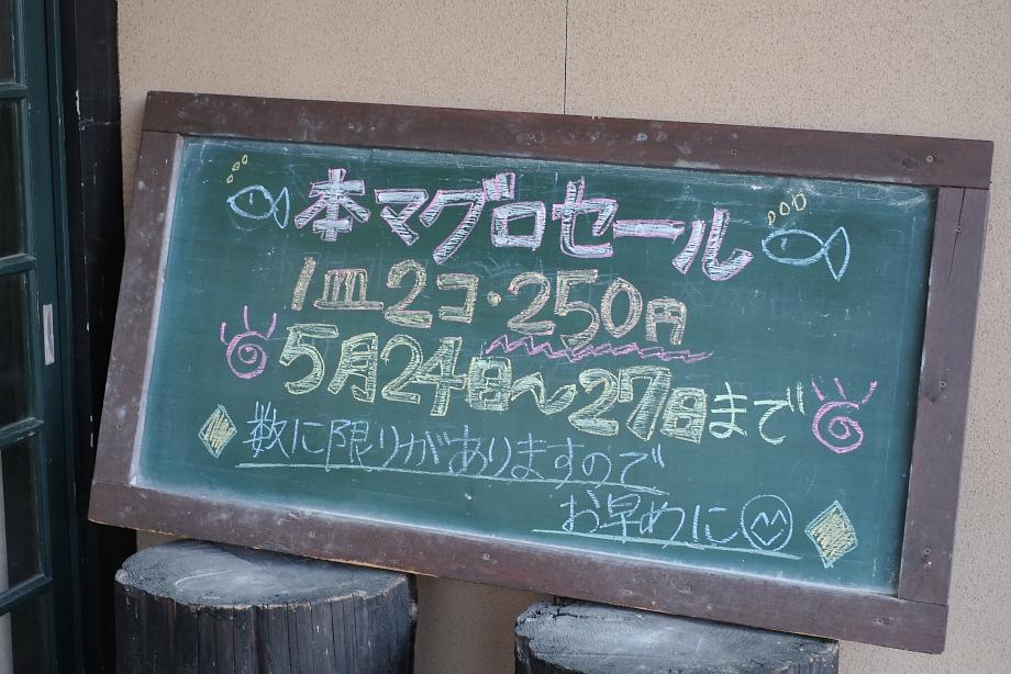XE1S8540.jpg