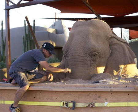 砂で作られたゾウの彫刻の画像(4枚目)