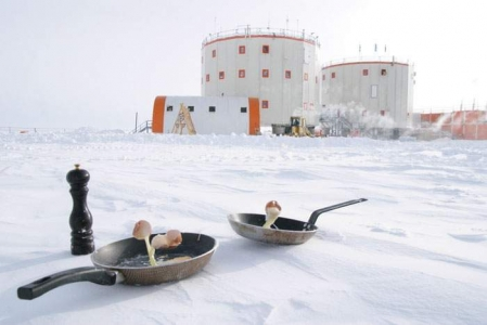 南極で食べ物を外に放置03
