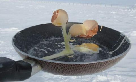 南極で食べ物を外に放置04