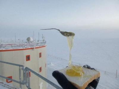 南極で食べ物を外に放置05