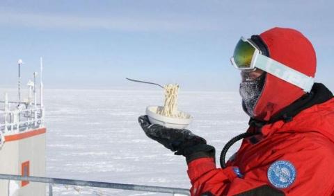 南極で食べ物を外に放置06