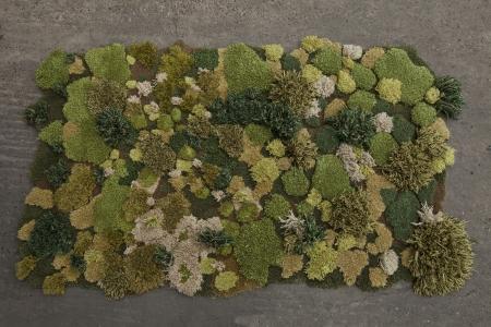生い茂る森林を再現した絨毯13
