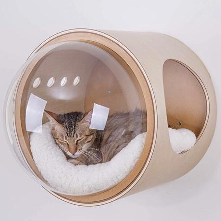 近未来的な猫のお部屋の画像(1枚目)