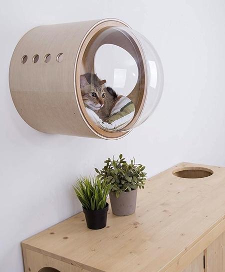 近未来的な猫のお部屋の画像(2枚目)