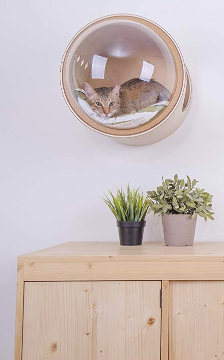 近未来的な猫のお部屋の画像(4枚目)