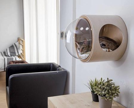 近未来的な猫のお部屋の画像(5枚目)