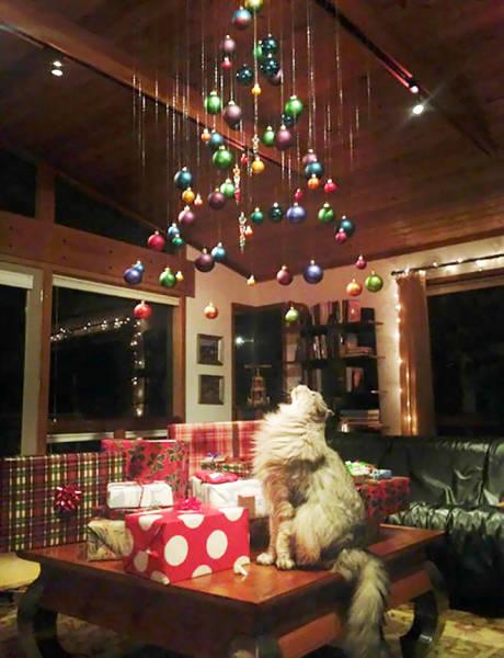 猫や犬がいる家のクリスマスツリーの画像(11枚目)