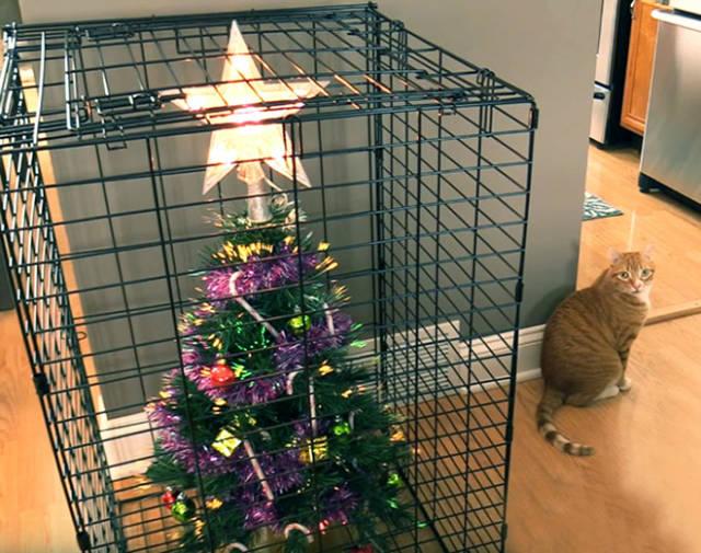 猫や犬がいる家のクリスマスツリーの画像(12枚目)