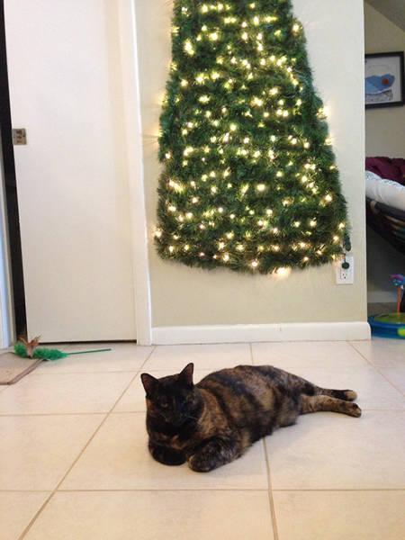 猫や犬がいる家のクリスマスツリーの画像(13枚目)