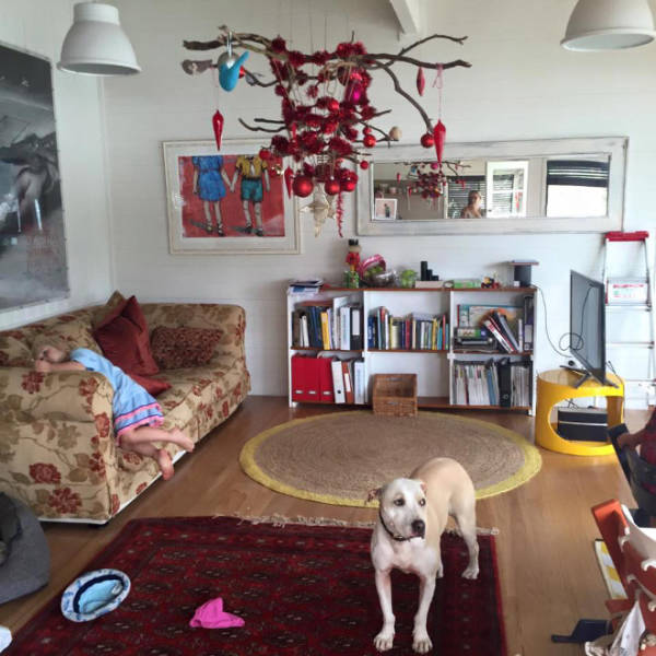 猫や犬がいる家のクリスマスツリーの画像(15枚目)