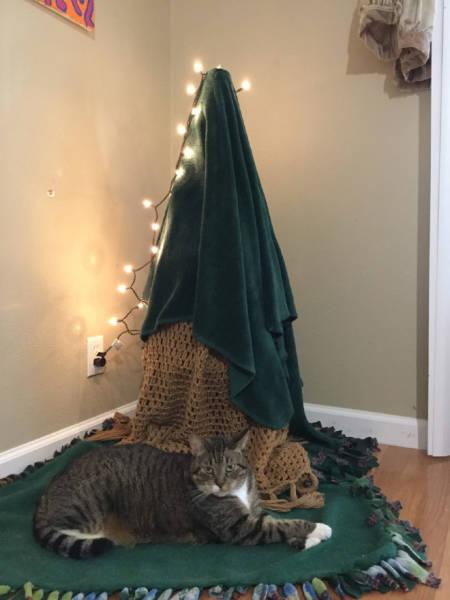 猫や犬がいる家のクリスマスツリーの画像(17枚目)