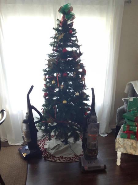 猫や犬がいる家のクリスマスツリーの画像(4枚目)