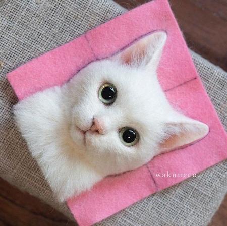 立体的な3Dの猫の肖像の画像(3枚目)