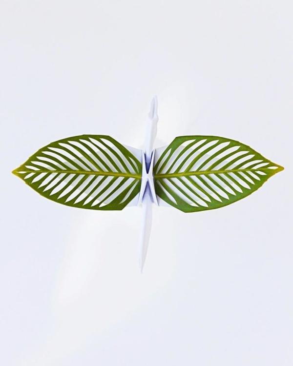美し過ぎる折鶴の画像(17枚目)