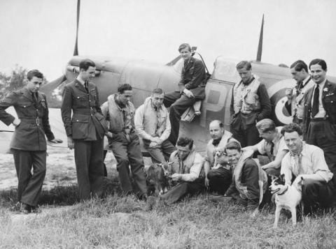 第二次世界大戦で活躍した犬03