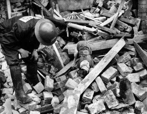 第二次世界大戦で活躍した犬04