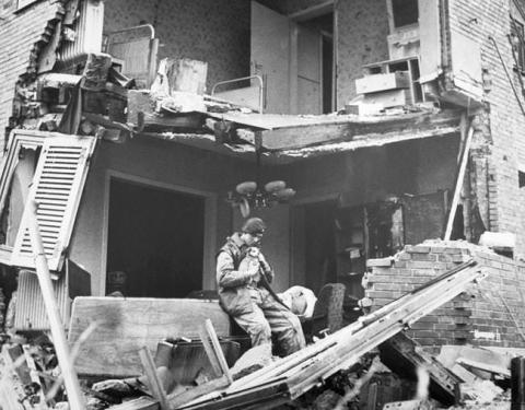 第二次世界大戦で活躍した犬10