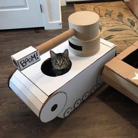 猫と戦車01