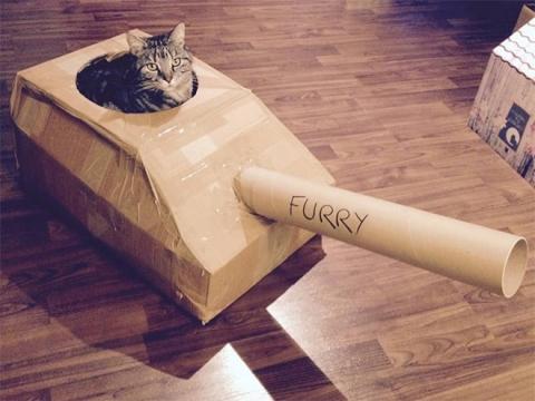 猫と戦車02