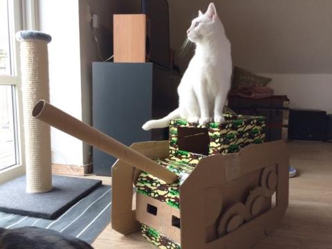 猫と戦車04