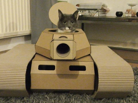 猫と戦車06
