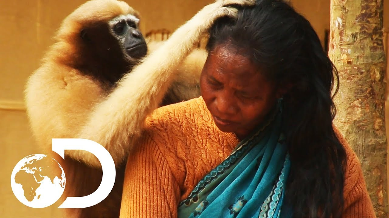 サルと仲良く暮らす!インドの秘境の村が癒やされる!!