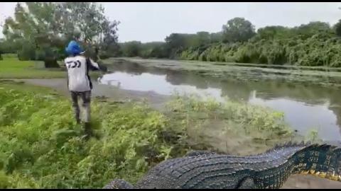巨大なワニが釣れる01