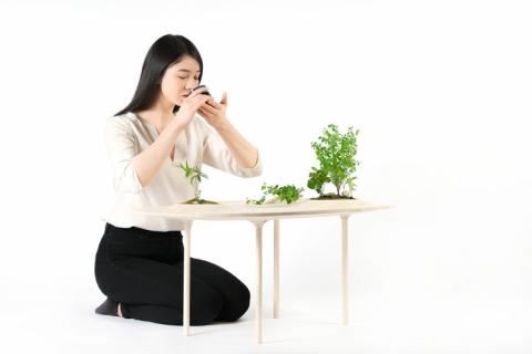 植物を栽培できるテーブル03